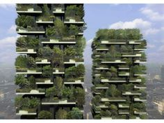 A vertical forest is expected to be completed this year in Milan. There are two tower apartment complexes which contain a total of 400 residential units. The facade of the buildings will be covered with 730 trees, 5,000 shrubs, and 11,000 perennial plants. It is expected to have the same ecological impact as 10,000 square meters of forest.    Aside from fighting smog and producing oxygen, the foliage is expected to provide insulation to the residential units