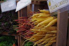 Carrots at UMATS - June 9, 2012
