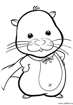 14 Best Hamster Coloring Pages Images On Pinterest Coloring Pages