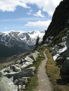Mount Abbott near Revelstoke, BC - a hiking trail - mountain weddings Camping And Hiking, Hiking Trails, Backpacking, Camping Gear, Revelstoke Bc, Hiking Photography, Amazing Photography, Hiking Essentials, Canadian Travel