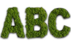 Moss Letters and Symbols: Creative Wall Art Island Moos, Moss Letters, Wall Murals, Wall Art, Moss Art, Plant Wall, Home Wall Decor, Black Wood, Reindeer
