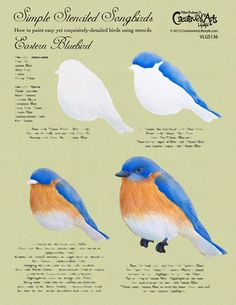 Simple Stenciled Songbirds / Eastern Bluebird Worksheet - G. Bird Painting Acrylic, Watercolor Bird, Tole Painting, Painting Tips, Watercolour Painting, Painting Techniques, Bird Paintings, Watercolors, Bird Stencil