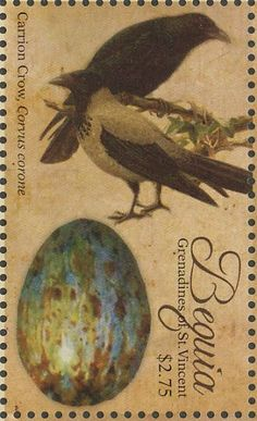Hooded Crow stamps - mainly images - gallery format