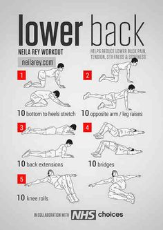 lower back pain facet joint - Google Search