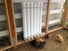 PVC chicken coop feeder - Thank you Suzan Pinkerton!!!