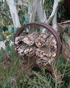 insect hotels should be close enough to shrubs, trees, garden to provide food for them.