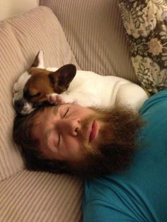 Josie(Daniel Bryan and Brie Bella's dog) is sleeping on Daniel Bryan's face. It is a adorable site