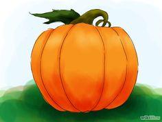 Titel afbeelding Grow a Pumpkin Step 09