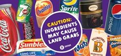 Behind the Brands - Big companies, sugar, and land grabs| Oxfam Education