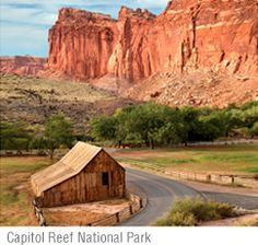 If you love exploring national parks but hate contending with the hordes of people you find at places such as Yellowstone and the Grand Canyon, you can visit some of these lesser-known undiscovered treasures. You'll have them pretty much to yourself! CAPITOL REEF NATIONAL PARK, UTAH Located in Utah's south-central desert, Capitol Reef is noted …