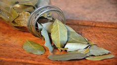 Las propiedades del laurel no se utilizan sólo en el mundo gastronómico para dar sabor a nuestras preparaciones. También se lo util...