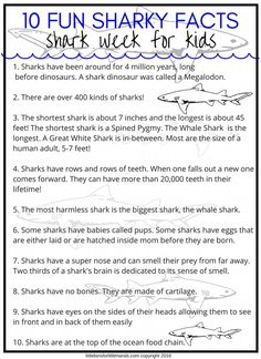 Shark Activities For Preschoolers and Beyond! – Indika Bray Shark Activities For Preschoolers and Beyond! Fun Shark facts For kids Shark Facts For Kids, Fun Facts About Sharks, All About Sharks, Sharks For Kids, Kids Facts, Animal Facts For Kids, Facts About Fish, Shark Activities, Preschool Activities