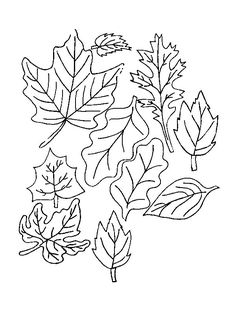 coloring page Leaves - Leaves