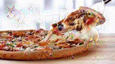 Deep Cheese Dreams, Weird, Dogs, Pizza, Motion