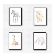 79 Best Baby Boy Boudoir Images Boudoir Powder Room Swoon Editions
