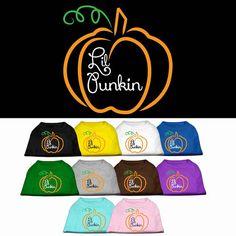 Halloween Dog Shirt Lil Punkin by DirtRoadDog on Etsy
