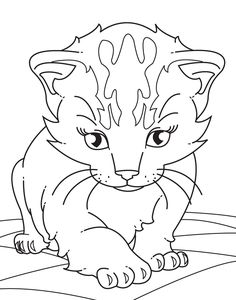 Realistic Kitten Coloring Page Images & Pictures - Becuo
