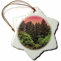 DYLAN SEIBOLD - PHOTOGRAPHY - PINK SKY FOREST - 3 inch Snowflake Porcelain Ornament (245727_1)
