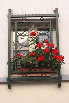 Welcoming window in Paris