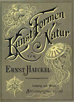 Ernst Haeckel - Formes artistiques de la Nature (Kunstformen der Natur) - Livre de Lithographies Illustratives de Sciences Naturelles. D'abord publié en lot de 10 x 10 Planches de 1899 à 1904, les Planches furent regroupées sur 2 Volumes. L'ouvrage de Ernst Haeckel consistait en 100 Planches d'Organismes divers, dont beaucoup étaient décrits pour la 1ère fois.