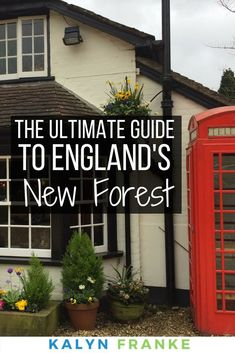 The New Forest in England is a beautiful place to visit. Not only is the landscape stunning, but the places to eat are fantastic, the things to do in the New Forest are endless, and the places to stay are luxurious and welcoming. Check out my guide to the New Forest the next time you take a day or weekend trip. #travel #NewForest #England