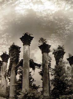 Windsor Ruins, Natchez, Mississippi