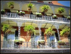 """Explore the streets of the beautiful French Quarter in New Orleans. Photo via """"Down the Wrabbit Hole - The Travel Bucket List"""" blog.  Click the image for the blog post."""