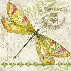 Dragonfly Daydreams-jp3429 Print By Jean Plout