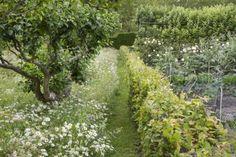 Gartenweg aus gemähtem Rasen im Landhausgarten
