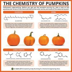 Periodic Graphics: The Chemistry Of Pumpkins http://cen.acs.org/content/dam/cen/static/pdfs/Article_Assets/93/09340-scitech2.pdf