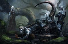 I Drow, o Elfi Scuri, sono una particolare razza di Elfi che vive nel sottosuolo, aventi pelle nera, capelli bianchi ed occhi chiarissimi (i Drow vedono benissimo al buio, mentre in piena luce sono molto miopi e vengono danneggiati dalla luce diretta del sole); hanno una società molto rigida governata da una Regina Madre, incarnazione della Dea Madre che adorano, e sono la razza elfica più affine alla magia (possono percepirne la presenza). Odiano fortemente gli Elfi di superficie.