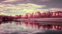 (Infrared) Sefton Park Lake by Will Lee, via 500px