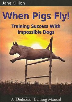 Jane Killion: WHEN PIGS FLY - TRAINING SUCCESS WITH IMPOSSIBLE DOGS (adlibriksessä 15,50e)