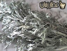 أضرار وفوائد عشبة الشيبة ويب طب Remede Egypte