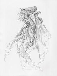 Dragon Drawings, Taylor Fischer on ArtStation at https://www.artstation.com/artwork/9zrLo