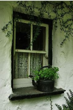 Windows and doors that talk to me Witch Cottage, Irish Cottage, Old Windows, Windows And Doors, Exterior Windows, Photos Originales, Window View, Window Dressings, Through The Window