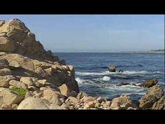 Kalifornien: Pacific Grove ReiseVideo