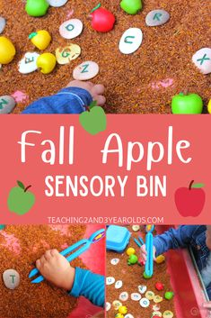 Looking for an easy apple sensory table for your fall theme? This activity has an extra fine-motor challenge with scoops and tweezers and is fun for preschoolers! Fall Activities For Toddlers, Activities For 2 Year Olds, Autumn Activities, Sensory Table, Sensory Bins, Sensory Activities, Sensory Play, Infant Lesson Plans, Apple Theme