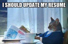 11 Best Funny Resume Memes Images Funny Things Jokes Funny Jokes