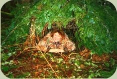 debris hut shelter is constructed using sticks and any available debris, such as leaves, moss, ferns, bark, etc...