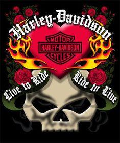 Willie G skull and roses...
