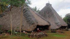 Kampung Adat Tutu Badha memiliki tradisi yang khas yaitu ritual tinju adat yang disebut etu.