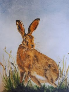 Rabbit, Artist, Painting, Animals, Animales, Animaux, Rabbits, Artists, Painting Art