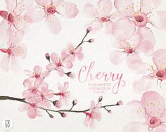 Watercolor cherry blossom cherry tree sakura hand painted spring flowers blossoms clip art watercolor invite diy invitation card (5.85 USD) by GrafikBoutique