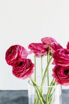 Blooms Bounty
