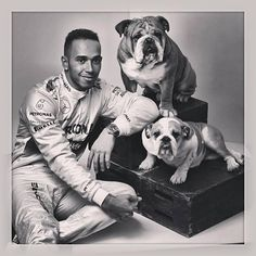 superstar Lewis Hamilton & his dogs Coco and Roscoe F1 Lewis Hamilton, Lewis Hamilton Formula 1, Ricciardo F1, Daniel Ricciardo, Bulldogs Ingles, British Bulldog, F1 Racing, Dogs Of The World, Formula One