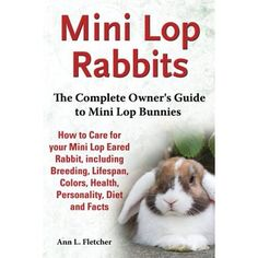 Mini Lop Rabbits, The Complete Owner& Guide to Mini Lop Bunnies . Mini Lop Bunnies, Mini Lop Rabbit, Holland Lop Bunnies, Pet Bunny Rabbits, Pet Rabbit, Lop Eared Bunny, Indoor Rabbit, Rabbit Breeds, Bunny Cages