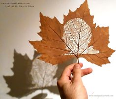 Handmade Leaf Cut by: Omid Asadi