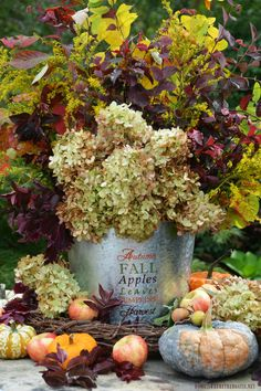 Fall is my favorite season and I've been counting down the days since July! Despite our 90 degree temperatures this week, I'm in an autumn harvest state of mind with thoughts of fall ap…