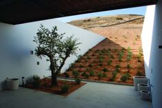 This home, built into a hill in the desert, is completely camouflaged and energy-friendly.